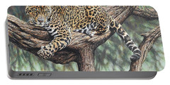 Jungle Outlook Portable Battery Charger