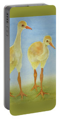 Junior Birdmen Portable Battery Charger
