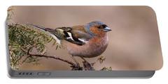 Juniper Bird Portable Battery Charger