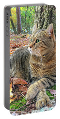 Portable Battery Charger featuring the photograph Just Chillin' In The Woods by Susan Leggett