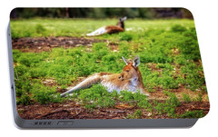 Portable Battery Charger featuring the photograph Just Chillin, Yanchep National Park by Dave Catley