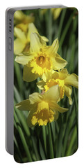 Just Dafs Portable Battery Charger