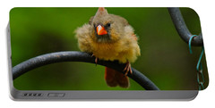 Portable Battery Charger featuring the photograph Just Doing A Little Feather Fluffing by Robert L Jackson