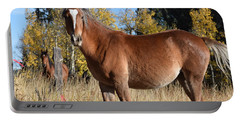 Horse Cr 511 Divide Co Portable Battery Charger