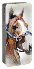 Justify Portable Battery Charger