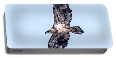 Portable Battery Charger featuring the photograph Juvenile Bald Eagle 2017 by Ricky L Jones