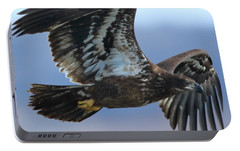 Portable Battery Charger featuring the photograph Juvenile Bald Eagle by Coby Cooper