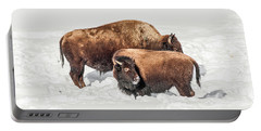 Juvenile Bison With Adult Bison Portable Battery Charger by Sue Smith