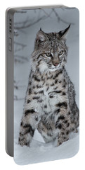 Juvenile Bobcat In The Snow Portable Battery Charger