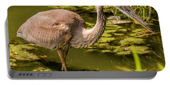 Juvenile Great Blue Heron Portable Battery Charger