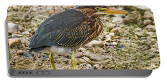 Portable Battery Charger featuring the photograph Juvenile Green Heron by Ricky L Jones