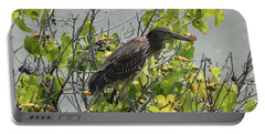 Portable Battery Charger featuring the photograph Juvenile Heron In Tree by Pamela Walton