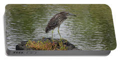 Portable Battery Charger featuring the photograph Juvenile Heron by Pamela Walton