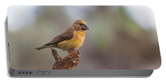 Juvenile Male Red Crossbill Portable Battery Charger