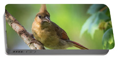 Juvenile Northern Cardinal Portable Battery Charger