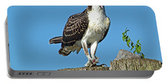 Juvenile Osprey#1 Portable Battery Charger by Geraldine DeBoer