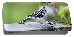 Juvenile Red-bellied Woodpecker In The Rain Portable Battery Charger
