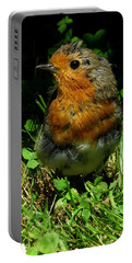 Juvenile Robin Portable Battery Charger