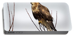Juvenile Rough-legged Hawk  Portable Battery Charger