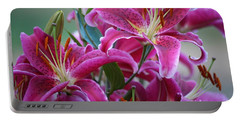K And D Lilly 4 Portable Battery Charger
