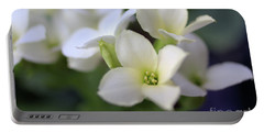 Kalanchoe Portable Battery Charger