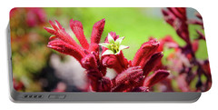 Kangaroo Paws Portable Battery Charger