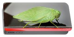 Katydids- Bush Crickets Portable Battery Charger