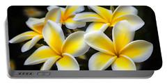 Kauai Plumerias Large Canvas Art, Canvas Print, Large Art, Large Wall Decor, Home Decor, Photograph Portable Battery Charger by David Millenheft
