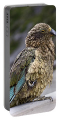 Kea Bird Portable Battery Charger by Sally Weigand