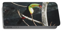 Keel-billed Toucan Portable Battery Charger