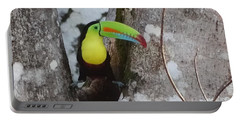 Keel-billed Toucan #2 Portable Battery Charger