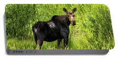Keep Your Distance Wildlife Art By Kaylyn Franks Portable Battery Charger