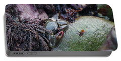 Kelp Crab Portable Battery Charger