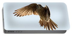 Portable Battery Charger featuring the photograph Kestrel Hover by Mike Dawson