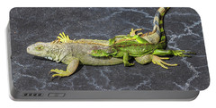 Portable Battery Charger featuring the photograph Key West Iguana Needs To Buy A Baby Carriage by Bob Slitzan