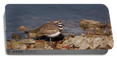 Kildeer On The Rocks Portable Battery Charger