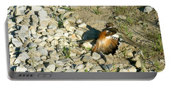 Killdeer Broken Wing Act Portable Battery Charger