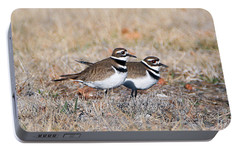 Killdeer Mates Portable Battery Charger by Elizabeth Winter
