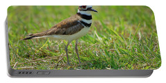 Killdeer Portable Battery Charger by Rich Leighton