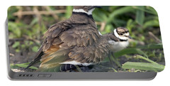 Killdeer With Chicks Portable Battery Charger by Craig Strand