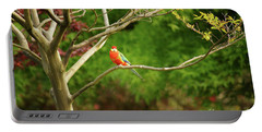 King Parrot Portable Battery Charger by Cassandra Buckley