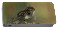 King Quail Chick Portable Battery Charger