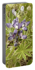 Portable Battery Charger featuring the photograph Kings Park Wildflower by Cassandra Buckley