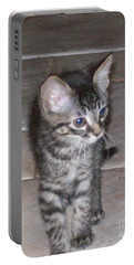 Martius Kitten Portable Battery Charger