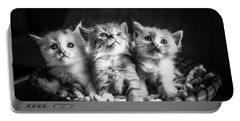 Kitten Trio Portable Battery Charger
