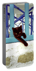 Kitten With Blue Rail Portable Battery Charger