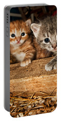 Kittens Portable Battery Charger