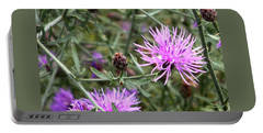 Knapweed Portable Battery Charger by Danielle R T Haney