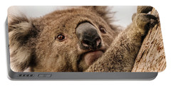 Koala 3 Portable Battery Charger by Werner Padarin