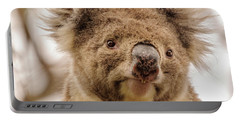 Koala 4 Portable Battery Charger by Werner Padarin